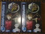 Gaming sessions 22 November 2009 - Sega Saturn, Panzer Dragoon Saga, cases