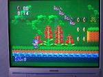 24 January 2009 - Sega Master System, Sonic the Hedgehog