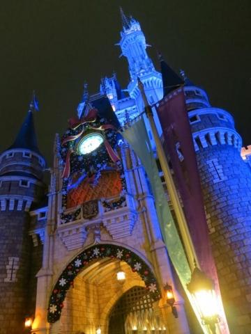 Day 14 - Cinderella's Castle