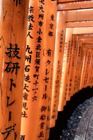 Day 6 - Fushimi Inari Shrine tori