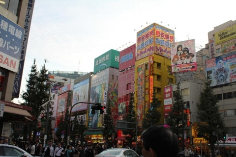 Day 2 - Akihabara at twilight
