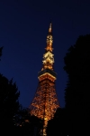 Day 3 - Tokyo Tower (from a distance)